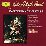 Münchener Bach-Orchester Bach: Cantatas I (Cd 5)