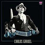 Carlos Gardel 30 Grandes Exitos