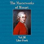 Libor Pesek The Masterworks Of Mozart, Vol. 30