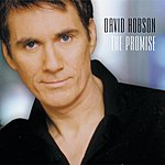 David Hobson The Promise