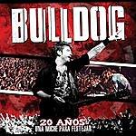 Bulldog 20 Años: Una Noche Para Festejar