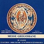 Nova Schola Gregoriana Messe Gregoriane (De Angelis, Cum Iubilo, Orbis Factor, Cunctipotens Genitor Deus)