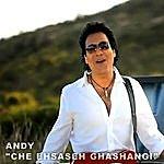 Andy Che Ehsase Ghashangi (Single)