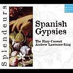 Andrew Lawrence-King Dhm Splendeurs: Spanish Gypsies