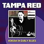 Tampa Red Hokum In Early Blues