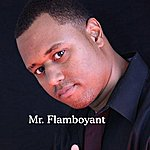 Mr. Flamboyant Mr. Flamboyant
