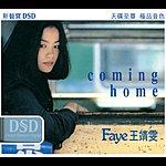 Faye Wong Coming Home (Dsd)