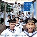 Wiener Sängerknaben Beethoven - Mozart - Haydn