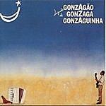 Luiz Gonzaga Luizinho De Gonzaga