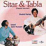 Ustad Shahid Parvez Sitar & Tabla