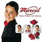 Marcel Rote Rosen Für Mama