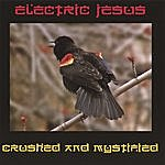 Electric Jesus Crushed And Mystified