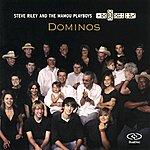Steve Riley & The Mamou Playboys Dominos