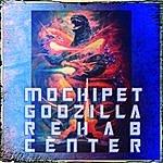 Mochipet Godzilla Rehab Center