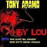 Tony Adamo Hey Lou (Feat. Mike Clark, Rodney Franklin, Bill Summers & Ernie Watts)