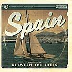 Between The Trees Spain