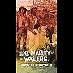 Bob Marley & The Wailers Grooving Kingston 12