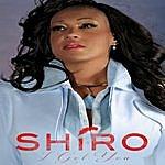 Shiro I Got You