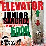 Junior Sanchez Elevator