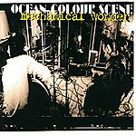 Ocean Colour Scene Mechanical Wonder