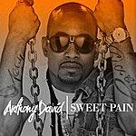 Anthony David Sweet Pain