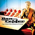 Don Felder Fall From The Grace Of Love - Single