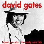 David Gates Bread Crumbs - The Early Solo Hits