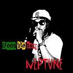 Neptune Green Lite Swag - Single