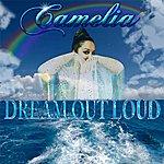 Camelia Dream Out Loud