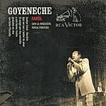 Roberto Goyeneche Farol