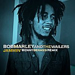 Bob Marley & The Wailers Jammin' (Benny Benassi Remix)