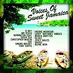 Mr. Vegas The Voices Of Sweet Jamaica