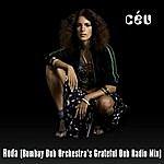 Céu Roda (Bombay Dub Orchestra's Grateful Dub Radio Mix)