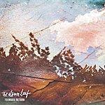 The Album Leaf Forward / Return
