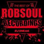 DJ Sneak Best Of Dj Sneak