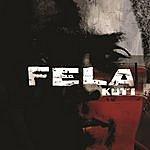 Fela Kuti The Best Best Of The Black President