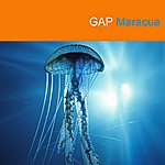 The Gap Band Maracua - Single