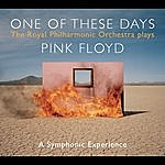 David Palmer The Royal Philharmonic Orchestra Plays Pink Floyd/One Of These Days