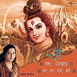 Anuradha Paudwal Om Namah Shivaye - Har Har Gange Maa