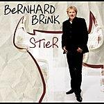 Bernhard Brink Stier