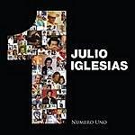 Julio Iglesias Numero Uno