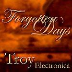 Troy Forgotten Days
