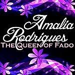 Amália Rodrigues The Queen Of Fado