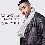 Ginuwine What Could Have Been