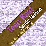 Sandy Nelson The Original Hit Recording - Teen Beat