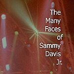 Sammy Davis, Jr. Many Faces Of Sammy Davis Jr.