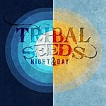 Tribal Seeds Night & Day