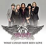 Aerosmith What Could Have Been Love
