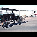 Petrillio C. Richardson Cowboys Waltz