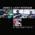 Lucky Peterson If You Can't Fix It